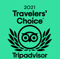 tripadvisor travellers choice award 2021