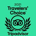 tripadvisor travellers choice award 2021